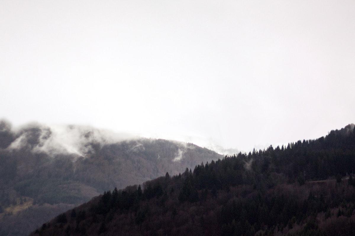 Fotografie. Foto von der Berglandschaft im Schwarzwald.
