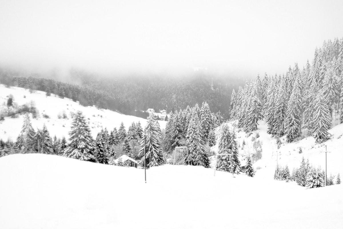 Fotografie. Foto von der schneebedeckten Berglandschaft im Schwarzwald.